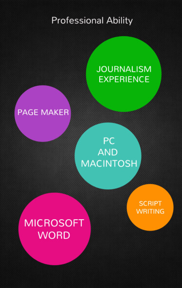 Awesome Resume Design Pic4